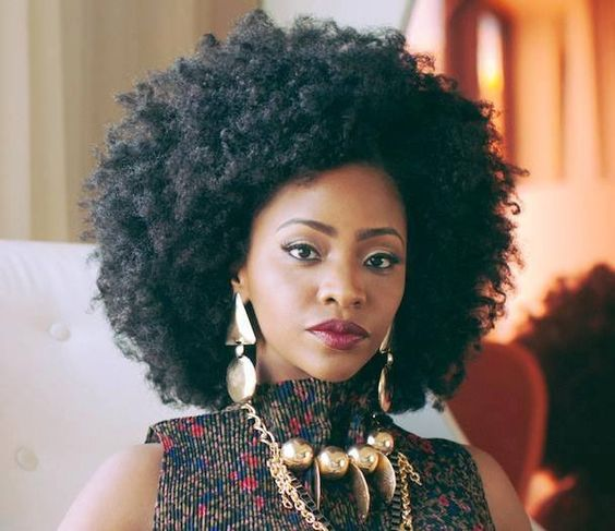 coiffure afro cheveux
