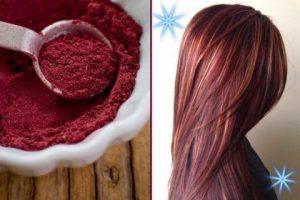 bissap cheveux coloration